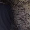 vlcsnap-2017-04-04-01h39m27s123.jpg